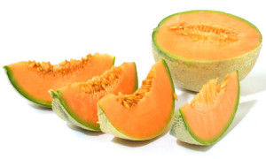 Melon - Cantaloupe