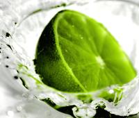 green-lime-1600-1200-fresh-fruit-wallpaper