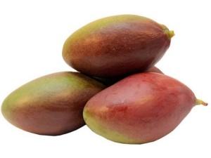 Mango Palmer